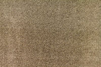 Taupe 67029001
